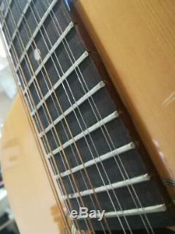 Chitarra Acustica Ariana 12 corde model 9024 made in Japan