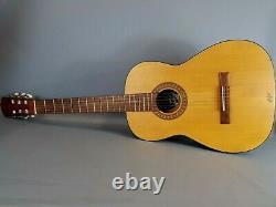 HOFNER 6 String Acoustic Guitar German Made EHB