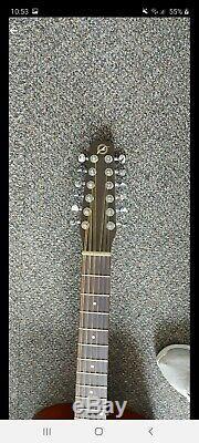 Seagull S12+ Cedar Guitar 12-string Made in Canada