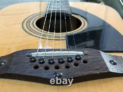 Eko Rio Grande XII Guitare Acoustique 12 Cordes Ajustage Pont + Sac Fait En Italien