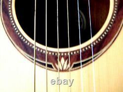 Gitarre Von Lag Spring Made In France Mit Pa Und Gigbag