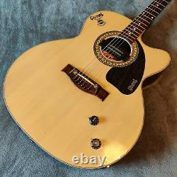 Givson Venus Rose Steel String Electro Acoustic Guitar Made In India Avec Pickup