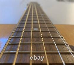 Takeharu Wt-100 Guitare Acoustique, Vintage Made In Japan