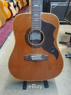 Vintage Eko 12 Cordes De Guitare! Fabriqué En Italie